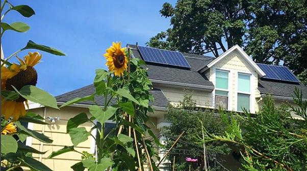 ODOE solar panels