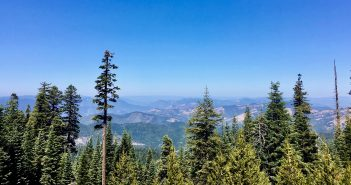 U.S. Forest Service Recognizes Oregon's Leadership on Forestry