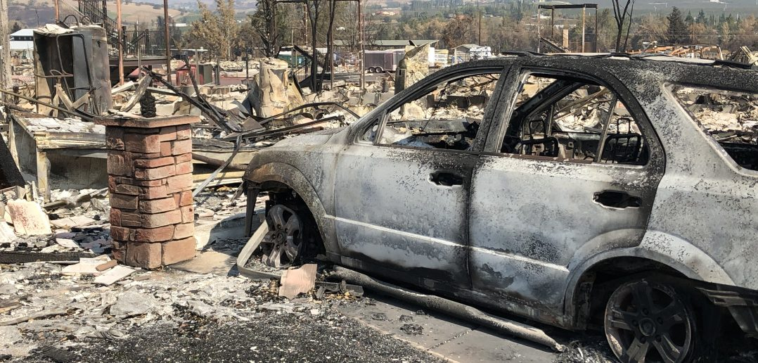 wildfire recovery is slow